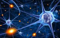 Ученым удалось вылечить эпилепсию в процессе исследования механизмов памяти