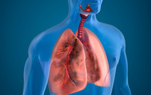 Новое поколение лекарств для лечения рака легких