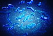 Занятия спортом положительно влияют на микробиом кишечника