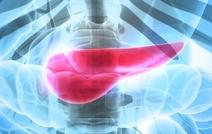 Комбинация химиотерапии с виротерапией в пять раз повысила выживаемость при раке поджелудочной железы