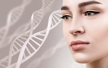 В Израиле приступили к производству живых клеток и тканей