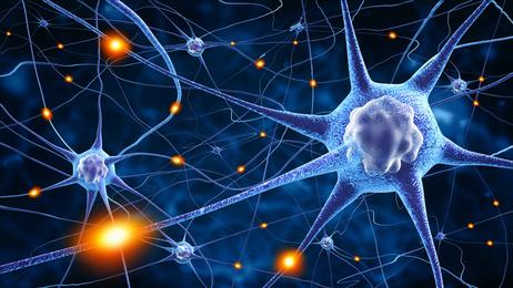 Нервные клетки при эпилепсии